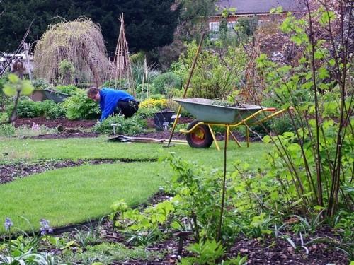 Holandia praca w ogrodnictwie